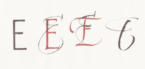 E evolutions 001