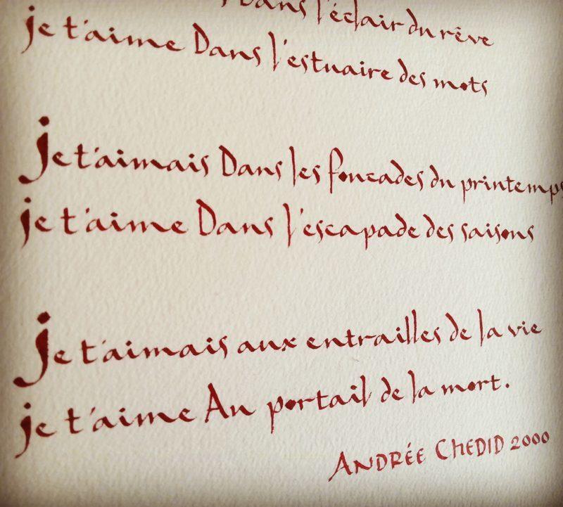 extrait calligraphie anne tassié sacramento